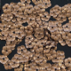 Clearance 7mm Satin Bronze Embossed Flower Sequins. BUY 1 GET 1 FRE